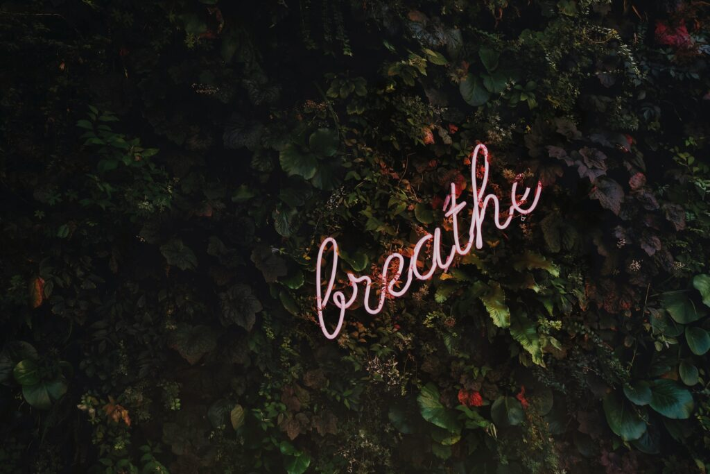 red cursive neon sign that reads breathe on a living wall of plants